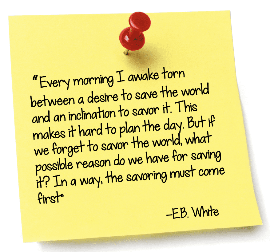 """"""" Every morning I awake torn between a desire to save the world and an inclination to savor it. This makes it hard to plan the day. But if we forget to savor the world, what possible reason do we have for saving it? In a way, the savoring must come first"""""""